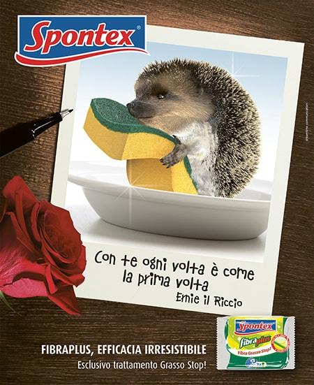 Spontex - Fibra plus